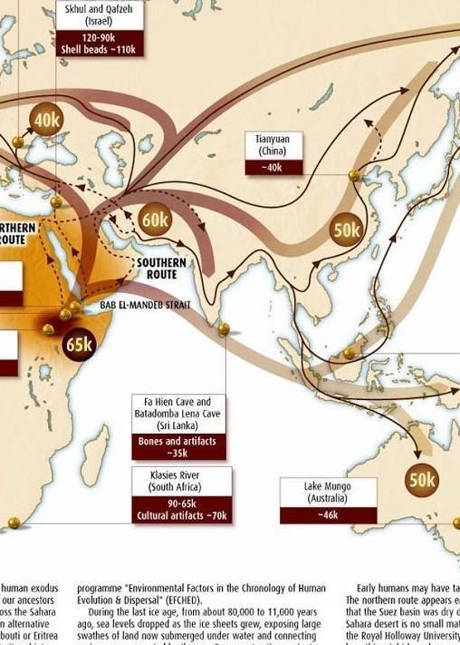 Gambar Peta Persebaran Manusia Purba Diindonesia Brainly Co Id