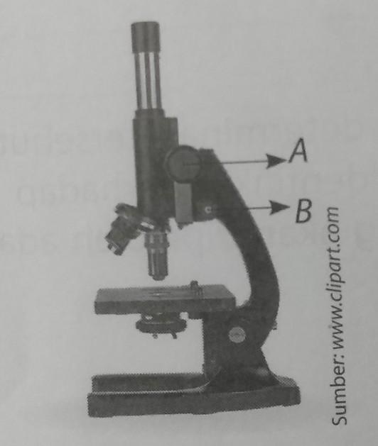 Perhatikan gambar mikroskop berikut..Jelaskan nama dan ...