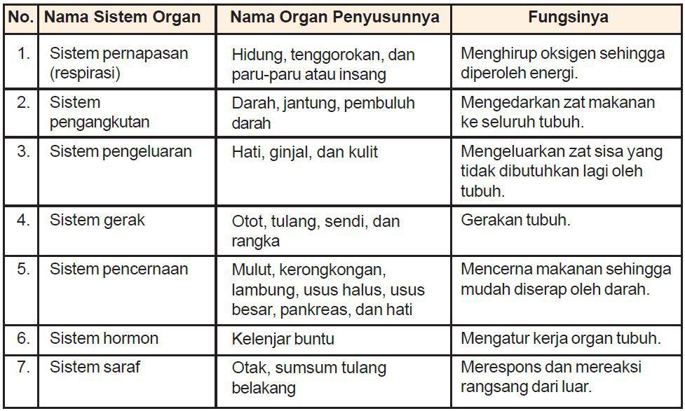 410+ Gambar Organ Tubuh Hewan Dan Tumbuhan HD