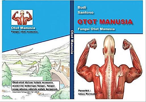 Cara Membuat Cover Buku Tentang Otot Manusia Brainly Co Id