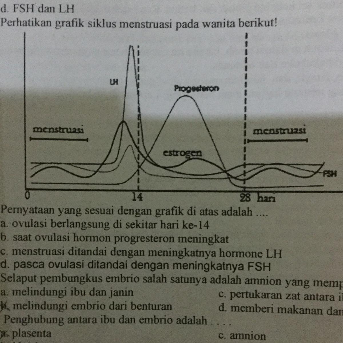 Pernyataan yang sesuai dengan grafik di atas adalah ...