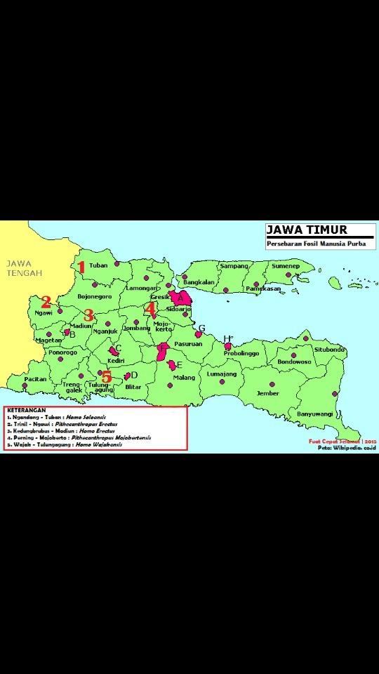 Tolong Beri Gambar Peta Persebaran Manusia Purba Di Pulau Jawa Brainly Co Id
