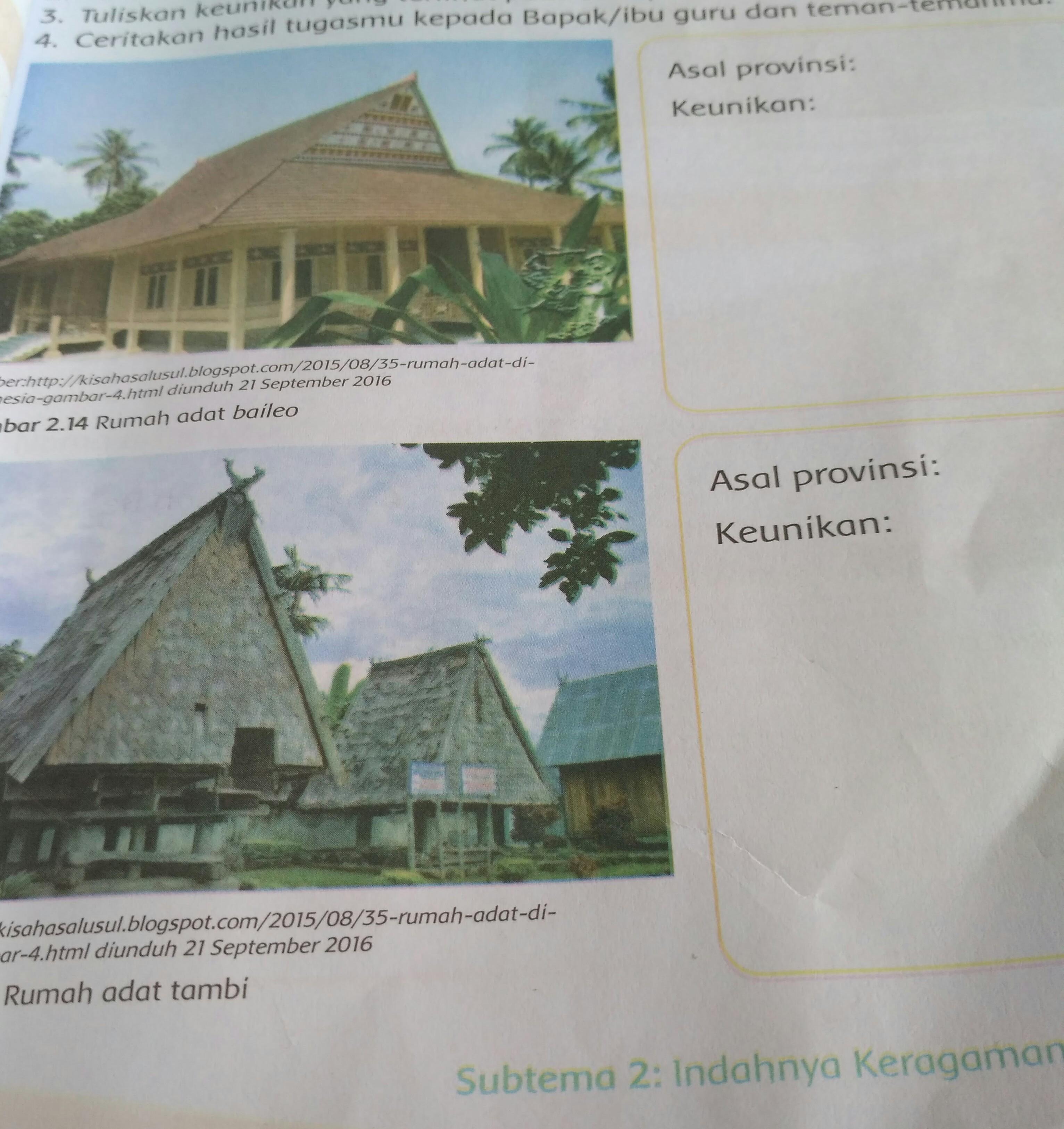 48 Gambar Rumah Adat Baileo Asal Provinsi Dan Keunikannya Terbaru Gambar Rumah