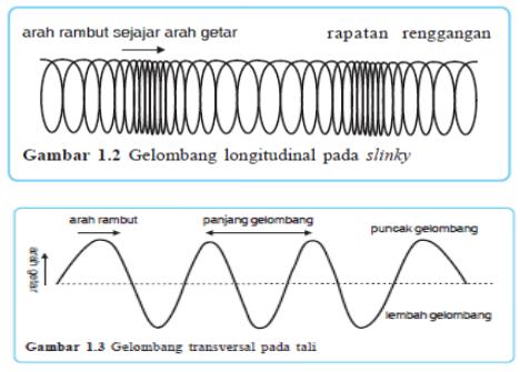 Jelaskan Bentuk Gelombang Transversal Dan Longitudinal Brainly Co Id