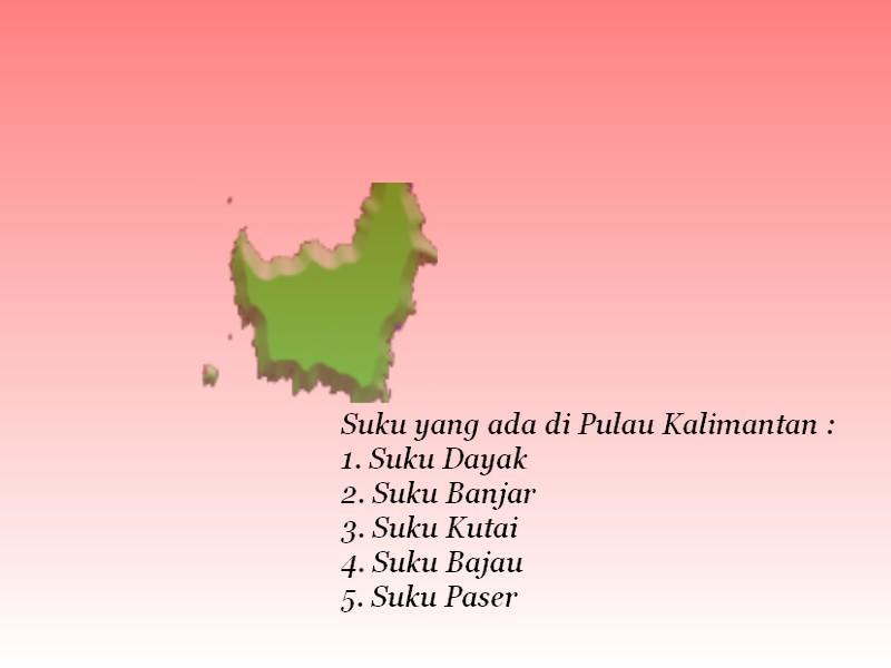 Sebutkan Suku Yg Ada Di Pulau Jawa Sumatera Kalimantan Sulawesi Dan Papua Masing Masing 5 Suku Brainly Co Id