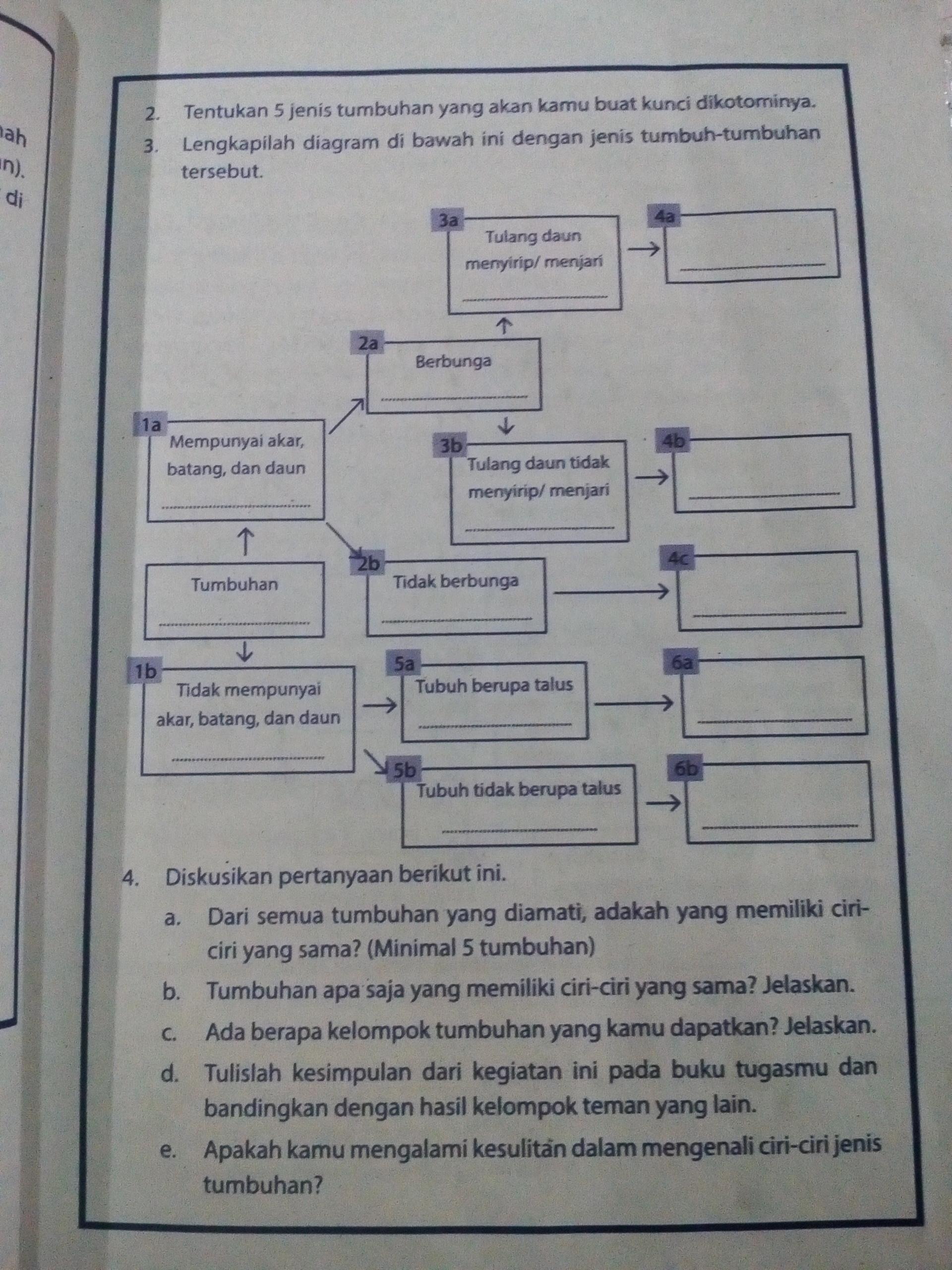 Lengkapilah Diagram Di Bawah Ini Dengan Jenis Tumbuhan Tersebut Brainly Co Id