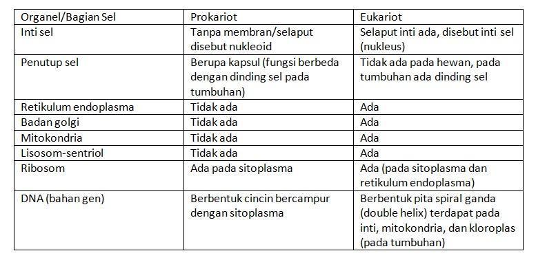 Apa Perbedaan Sel Prokariotik Dan Sel Eukariotik Brainly Co Id