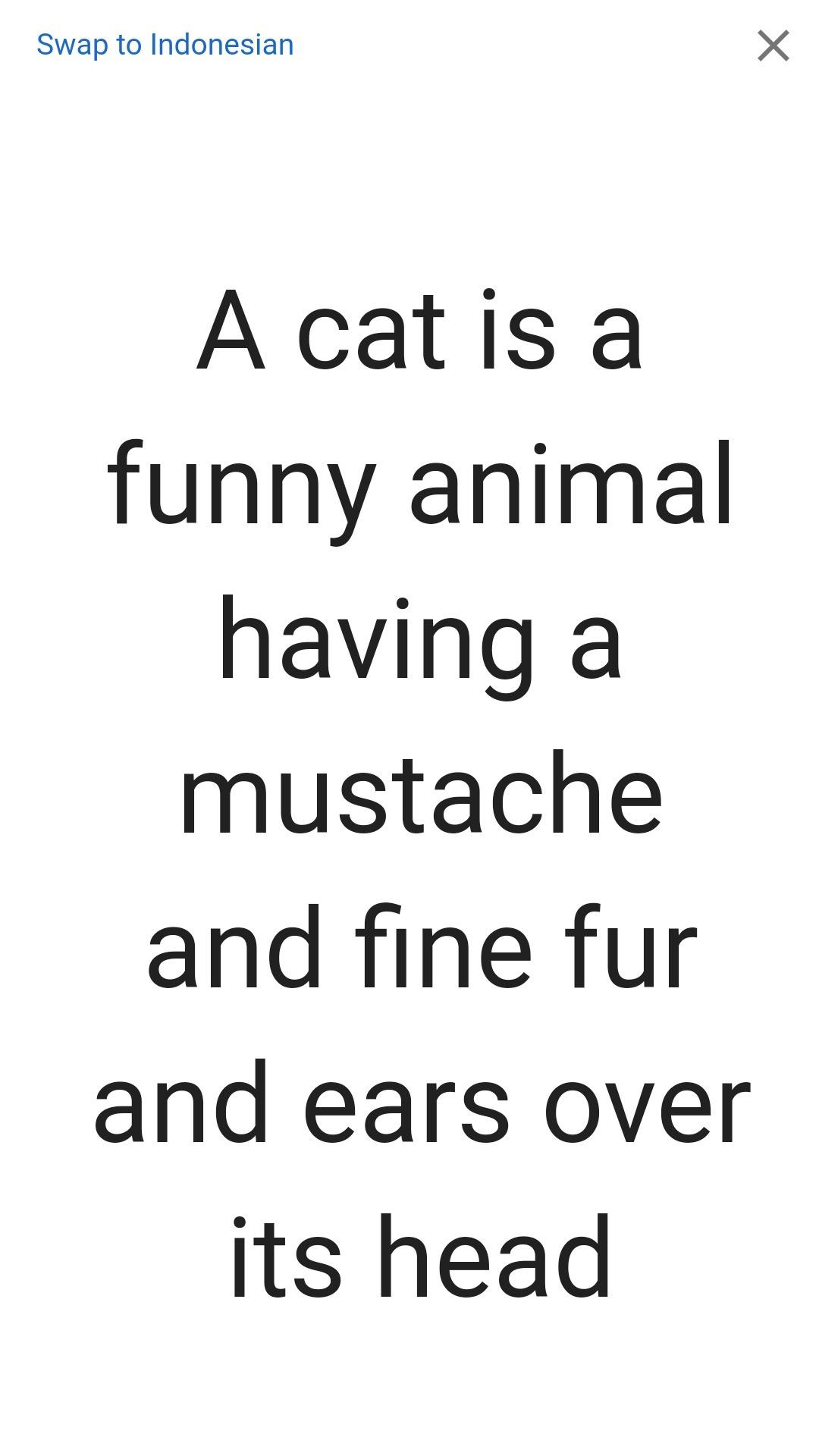 Contoh Teks Deskripsi Tentang Kucing Dalam Bahasa Inggris Berbagai Teks Penting