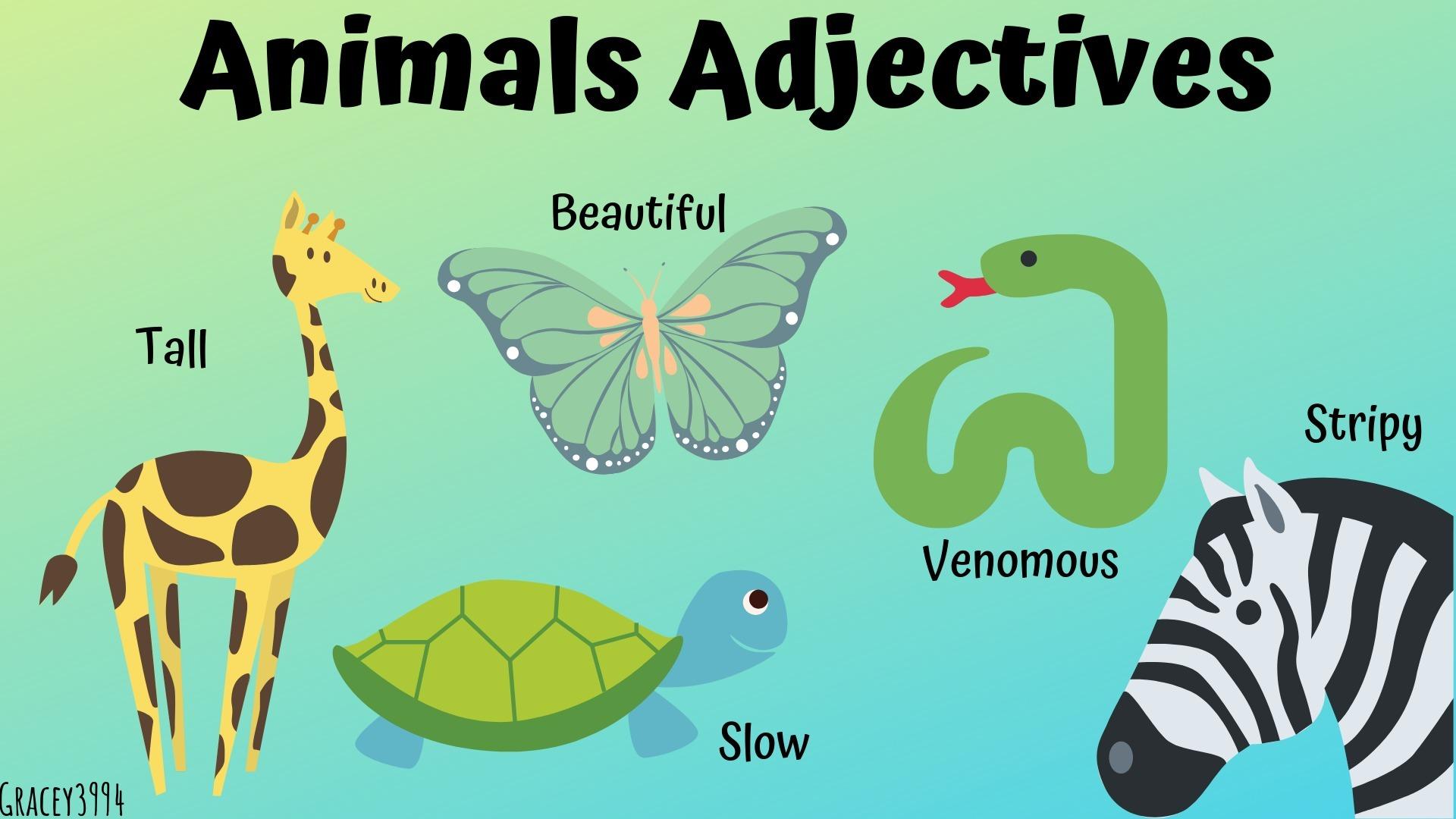Membuat Teks Deskritif Animal Habitat Food Activity Characteristis