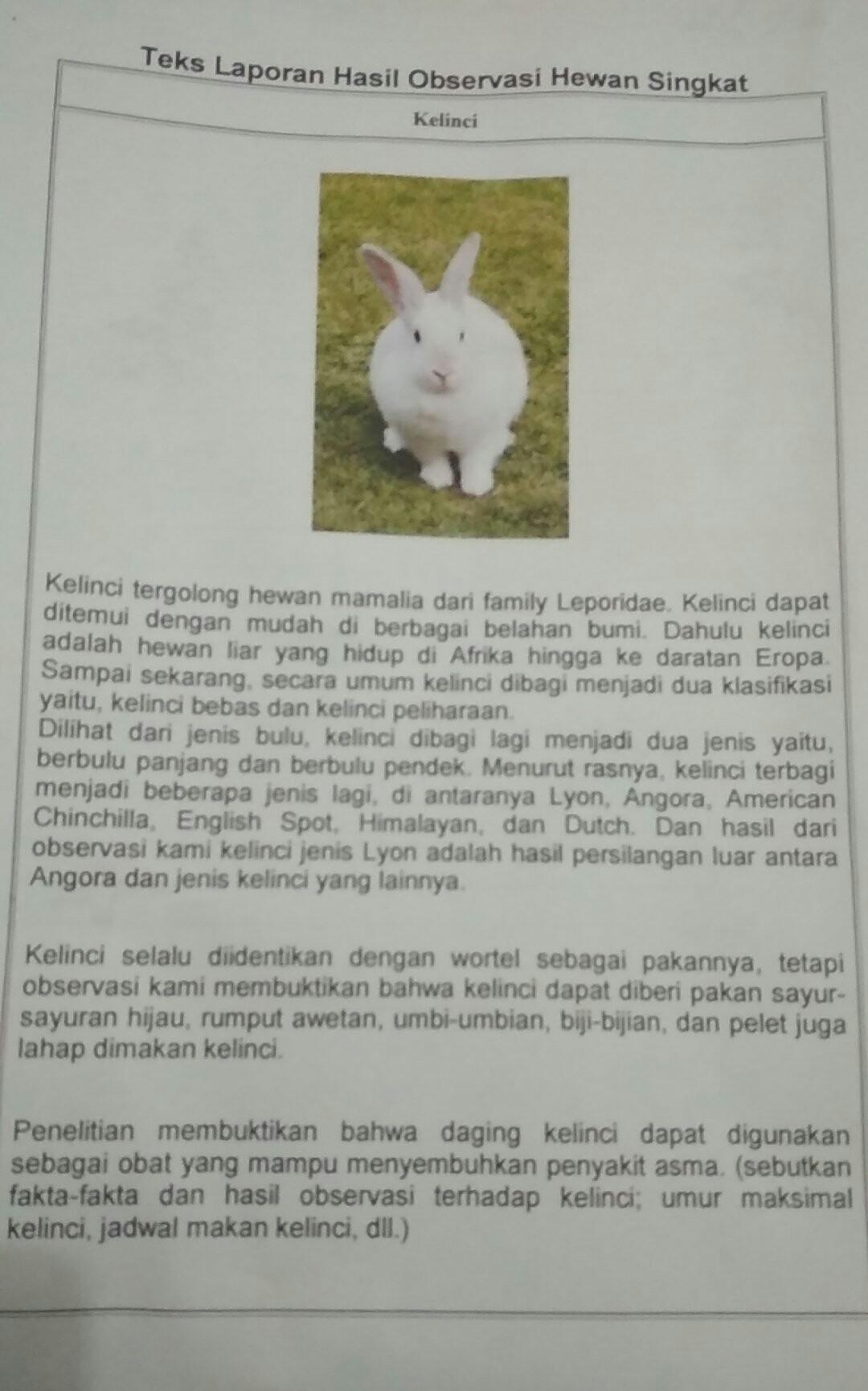 Contoh Teks Laporan Observasi Beserta Strukturnya Dalam Bahasa Indonesia Kumpulan Contoh Laporan