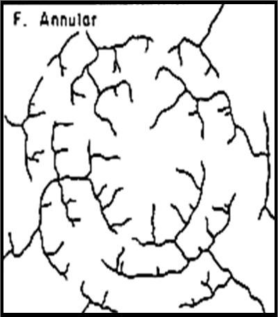 Jelaskan Mengenai Pola Aliran Sungai Dendritik Brainlycoid