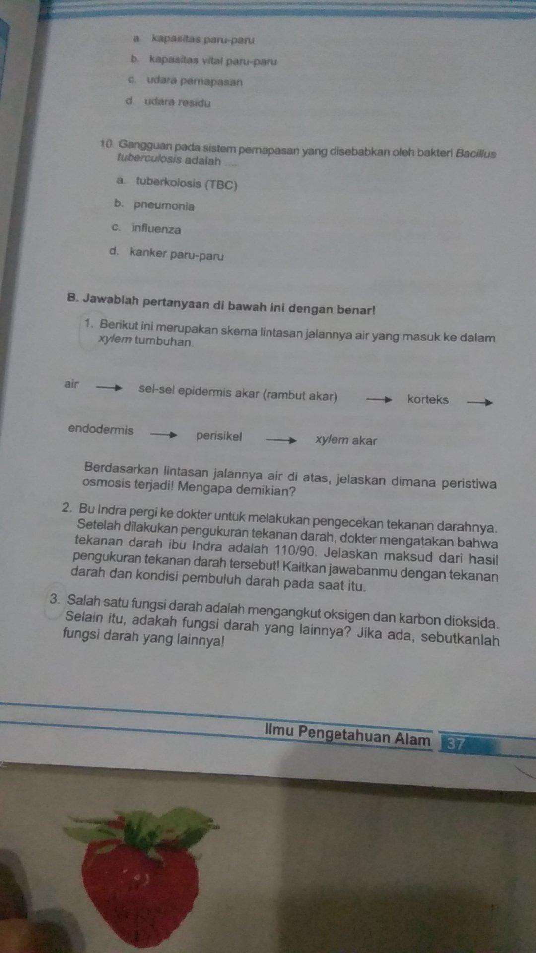 Jawaban Ipa Kelas 8 Semester 2 Halaman 38 Guru Ilmu Sosial