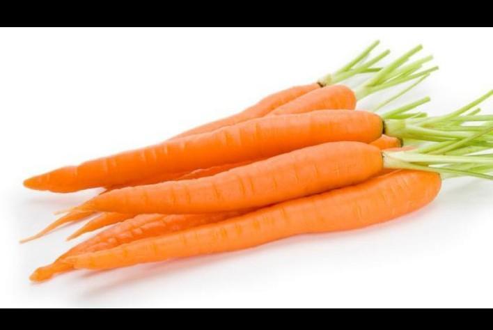 35++ Hasil samping pada tanaman wortel ideas