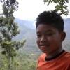 Arrafi568
