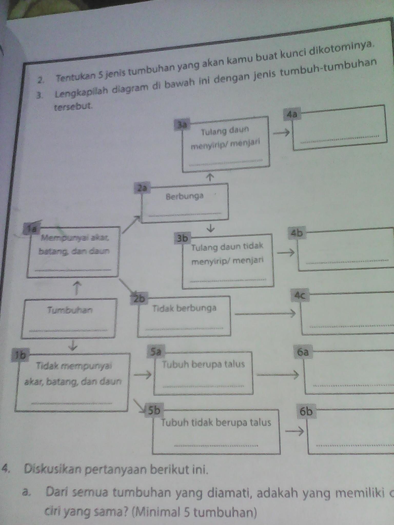 Lengkapilah Diagram Di Bawah Ini Dengan Jenis Tumbuh Tumbuhan Tersebut Berbagai Jenis Itu