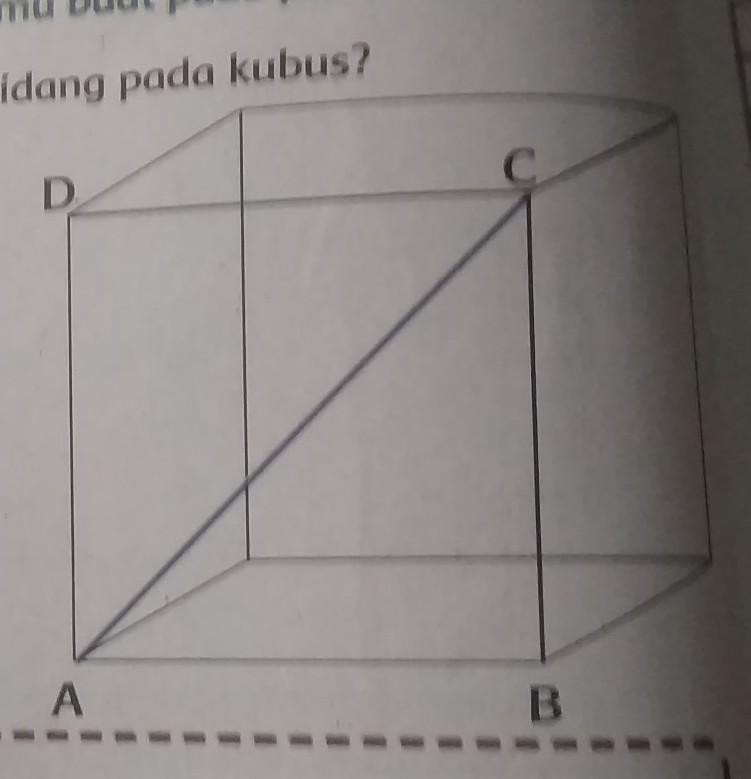 Ada Berapa Diagonal Bidang Yang Terdapatpada Kubus Jelaskan Jawabanmu Tulislahnamanya Pada Kotak Brainly Co Id