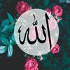 Aisyah1411