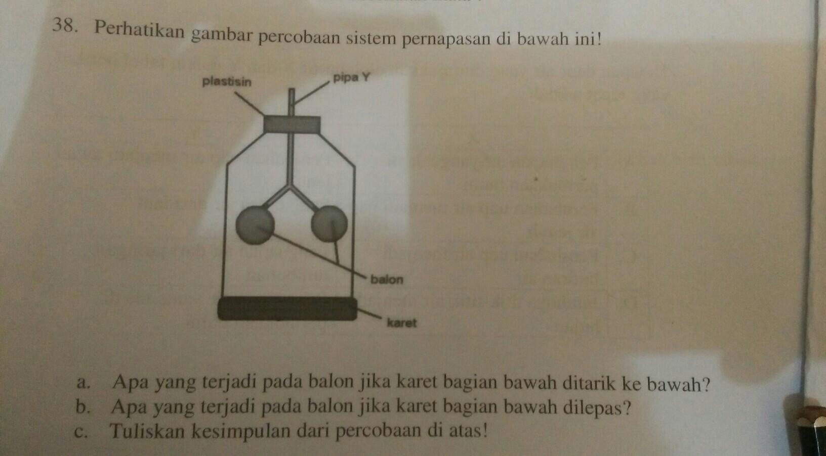 perhatikan gambar percobaan sistem pernapasan di atas ...