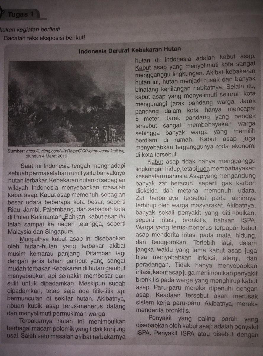 Contoh Artikel Contoh Artikel Opini Tentang Kebakaran Hutan