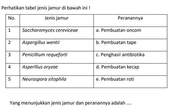 Perhatikan tabel jenis jamur di bawah ini !Yang ...