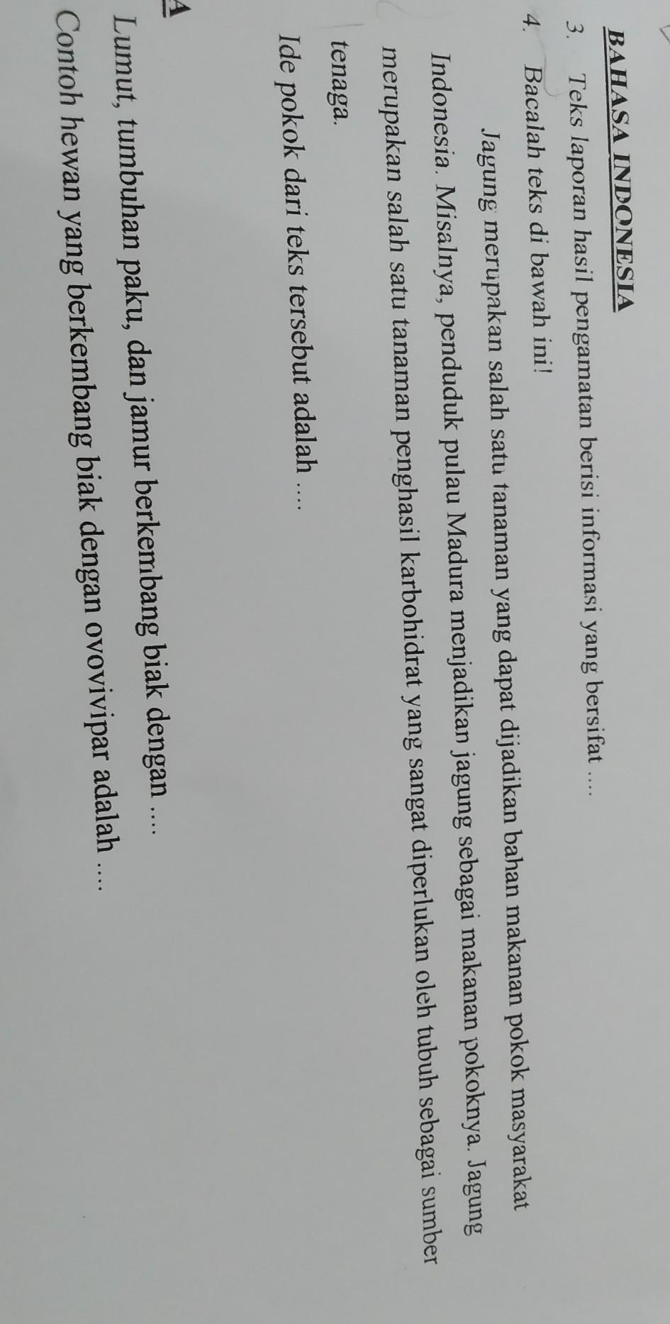 Bahasa Indonesia3 Teks Laporan Hasil Pengamatan Berisi Informasi Yang Bersifat 4 Bacalah Teks Brainly Co Id