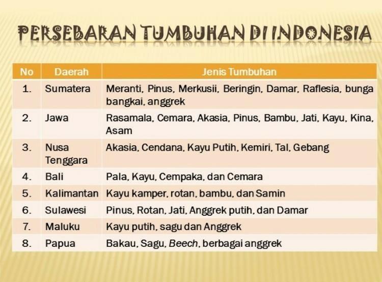 Gambar Peta Persebaran Flora Dan Fauna Di Indonesia Brainly Co Id