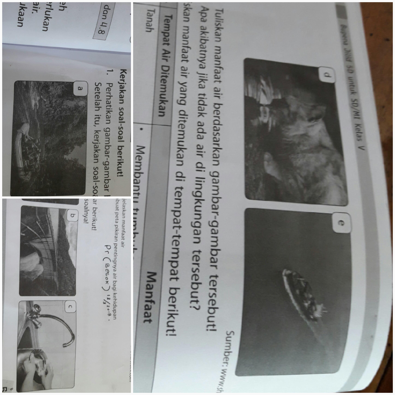 1 A Tuliskan Manfaat Air Berdasarkan Gambar Gambar Tersebut B Apa Akibat Jika Tidak Ada Air Di Brainly Co Id