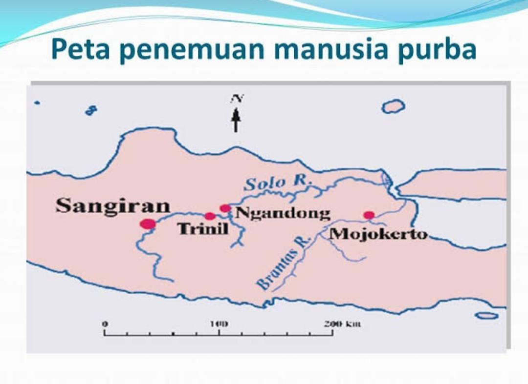Gambar Peta Sederhana Penemuan Fosil Manusia Praaksara Di Pulau Jawa Brainly Co Id