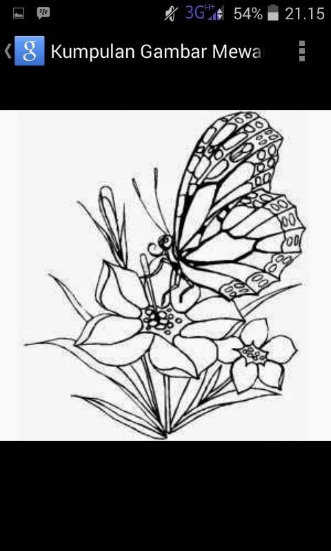Gambarlah Sketsa Kupu Kupu Dan Tangkai Bunga Digabung Ya Brainly Co Id