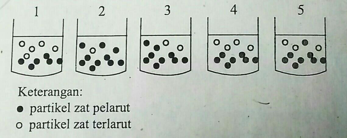 Gambar berikut merupakan gambar partikel zat terlarut dan ...