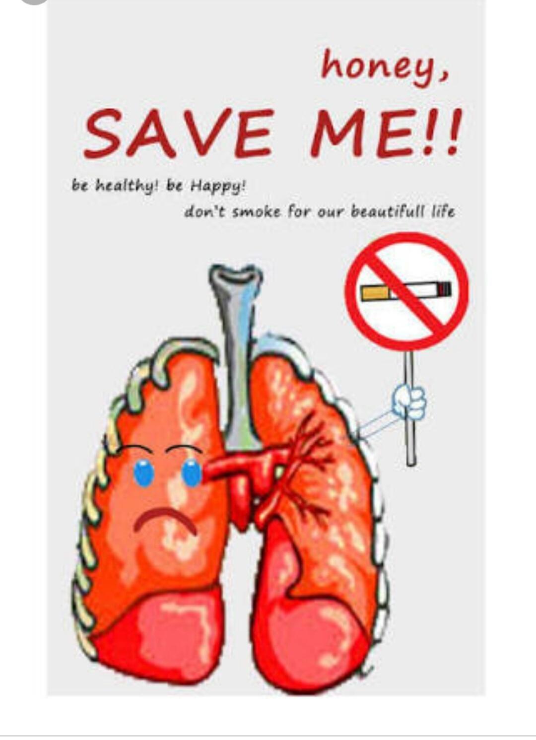 Unduh 98+ Gambar Poster Cara Menjaga Kesehatan Alat Pernapasan Terbaik Gratis