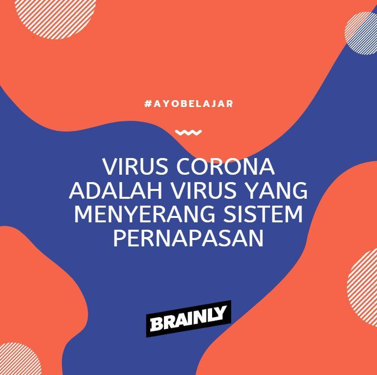 Apa Yang Kamu Ketahui Tentang Virus Corona Atau Covid 19 Brainly Co Id