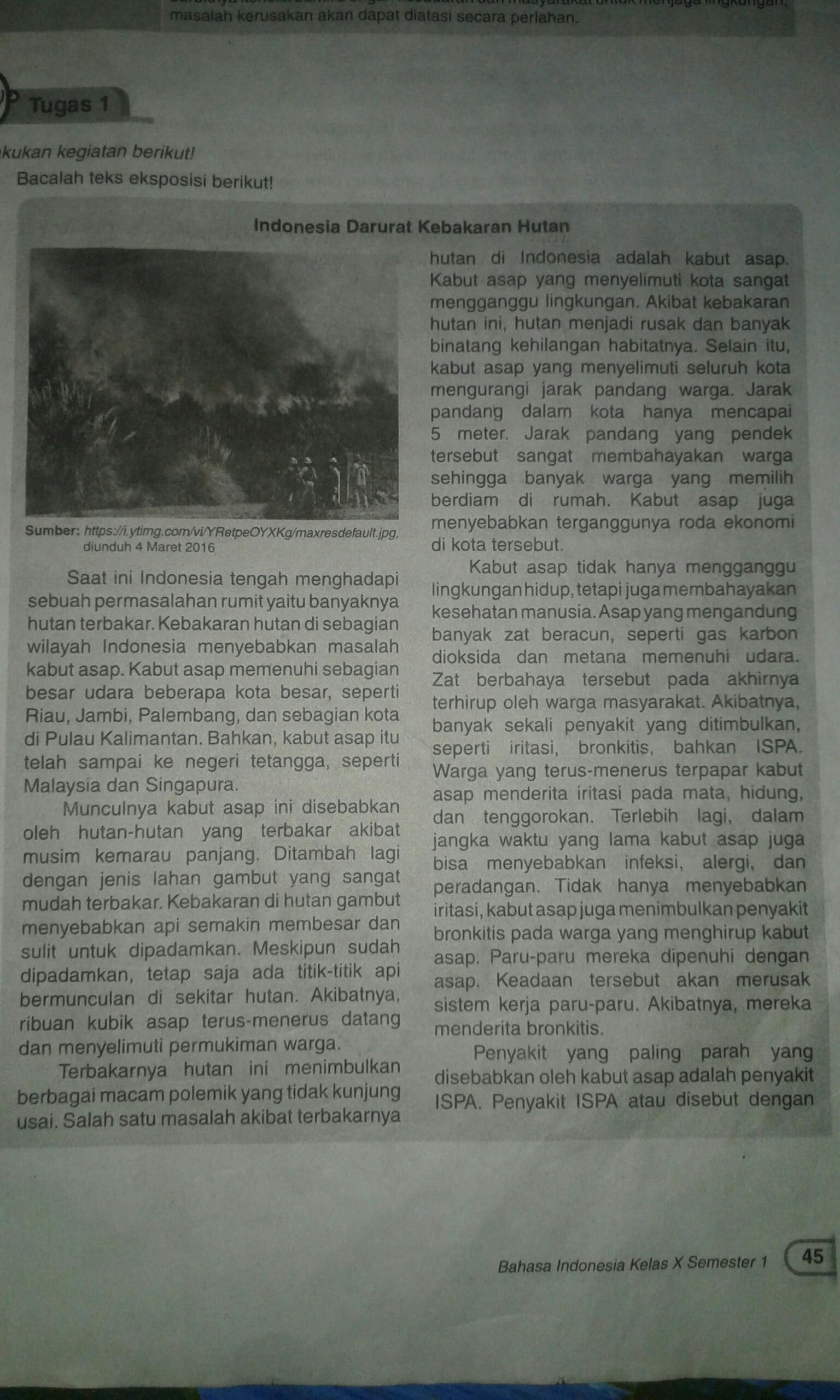 Tolong Buatkan Ringkasan Tentang Indonesia Darurat Kebakaran Hutan