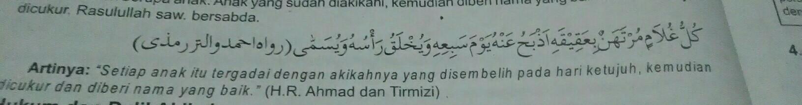Tuliskan Ayat Akikah Dan Qurban Amp Dasar Nya Brainlycoid