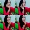 Anise11