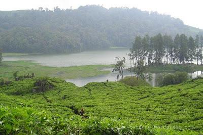 Tolong Kasih Caption Gambar Pemandangan Alam Dalam Bahasa Inggris