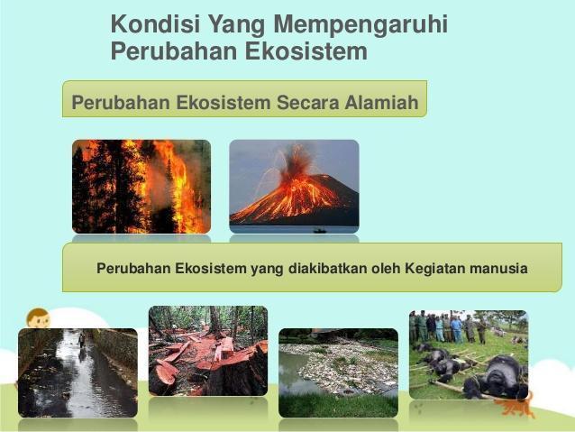 jelaskan apa yang dimaksud dengan lingkungan? terdiri atas ...