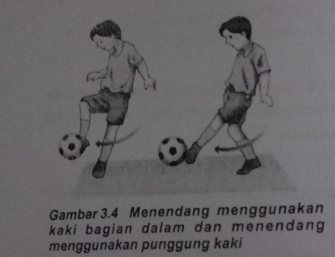 Tuliskan Cara Menendang Bola Dalam Permainan Sepak Bola Brainly Co Id