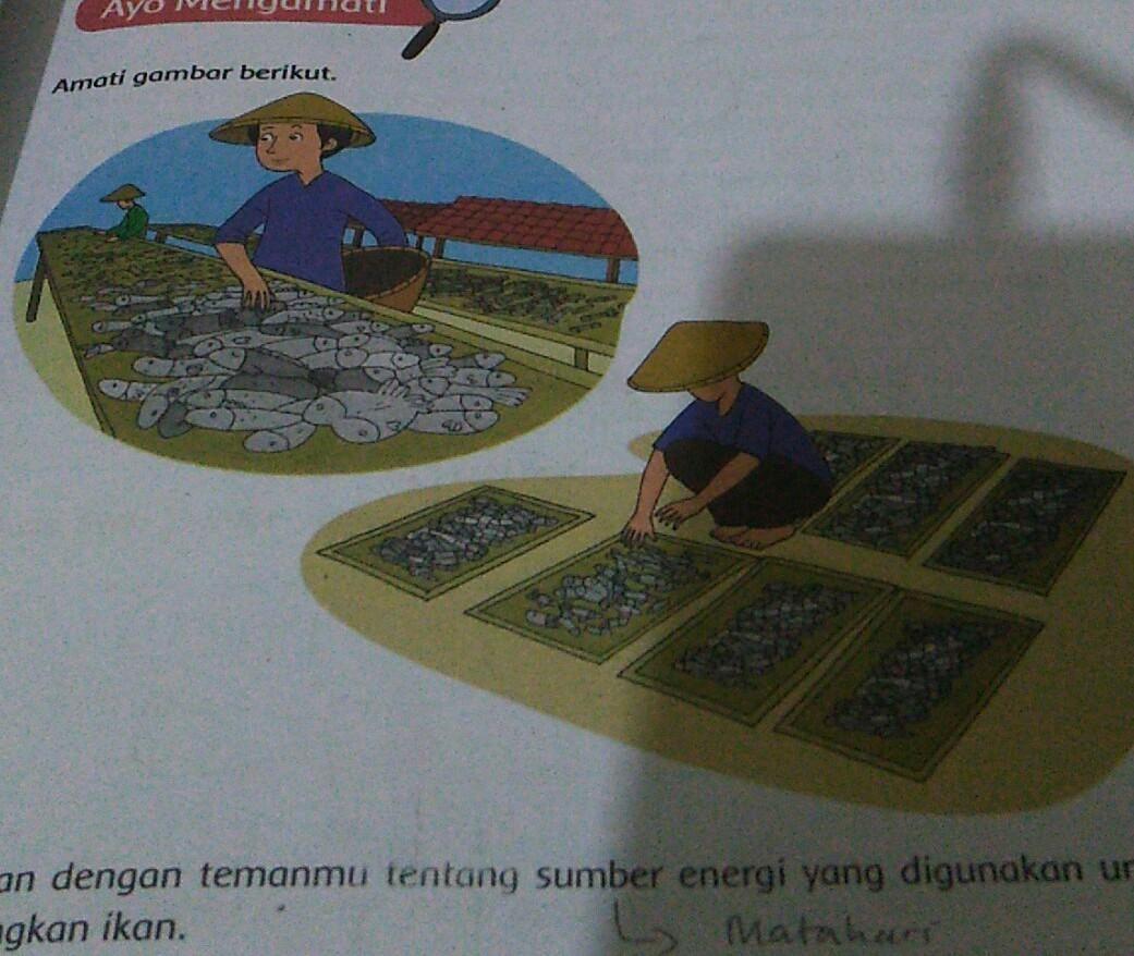 diskusikan dengan temanmu tentang sumber energi yang ...