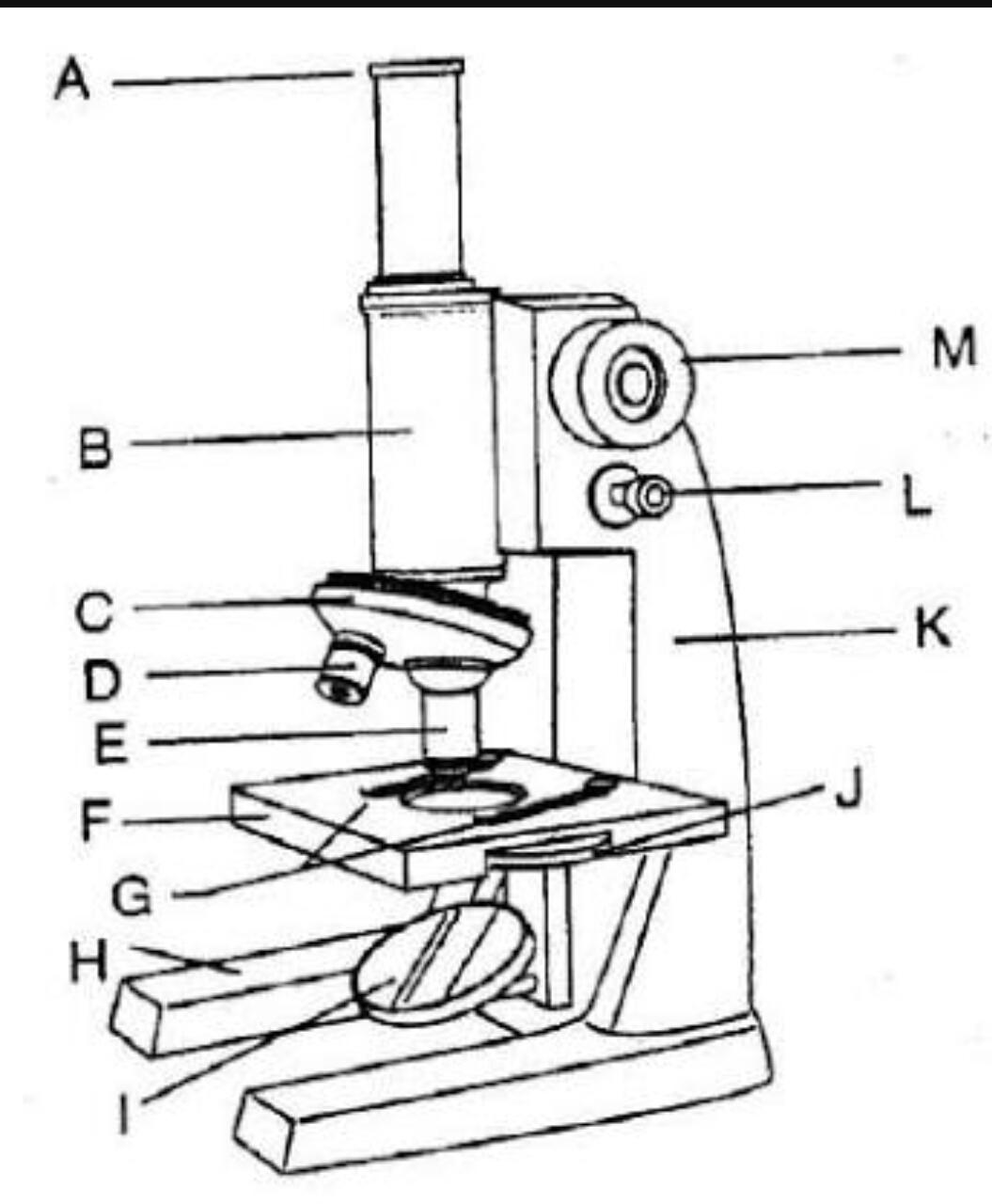 Tex Quiz Biologi Tex Keterangan Quiz Dengan Materi Mikroskop Level Pertanyaan Easy 50 Brainly Co Id