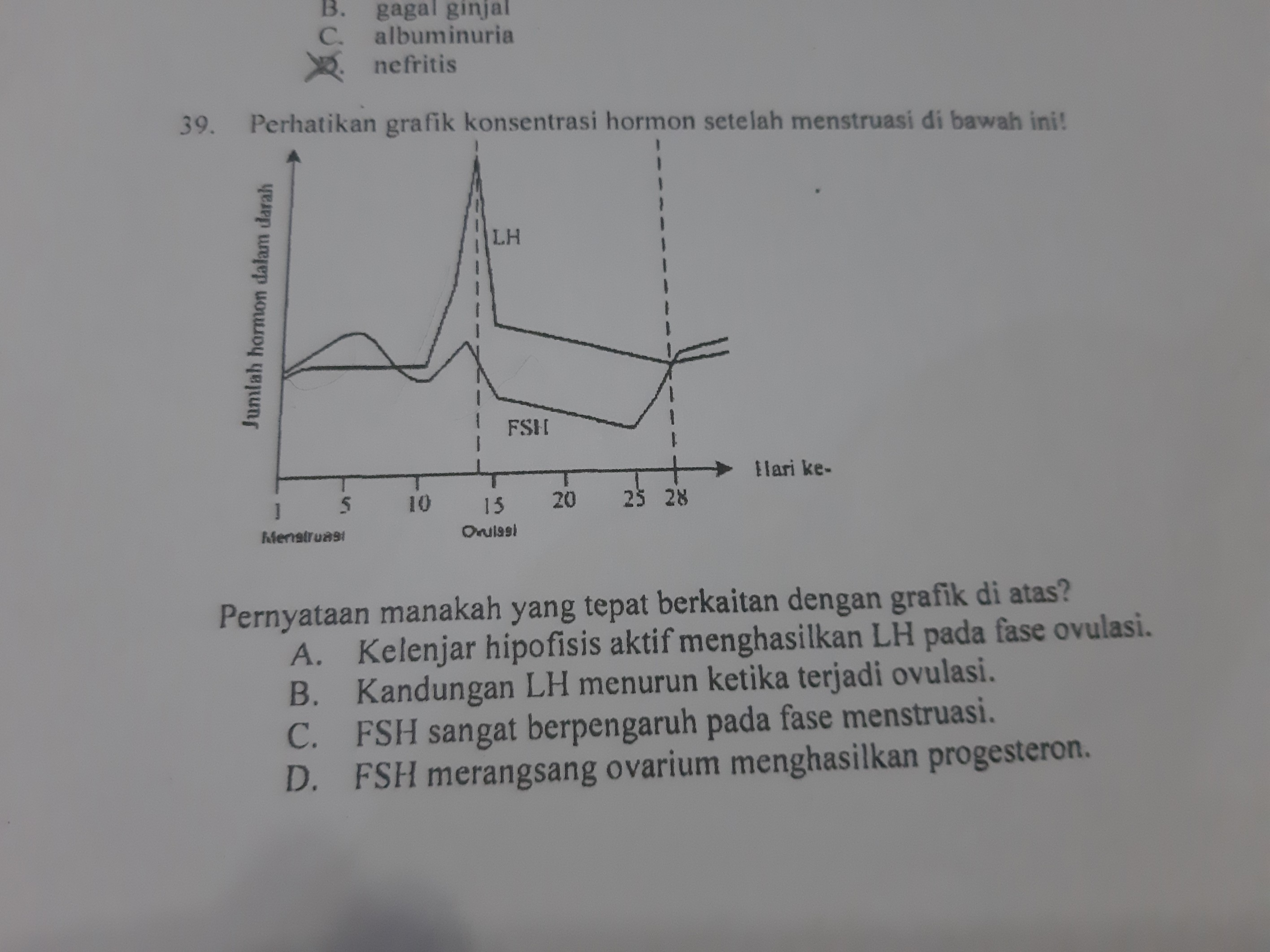 Pernyataan manakah yang tepat berkaitan dengan grafik di ...