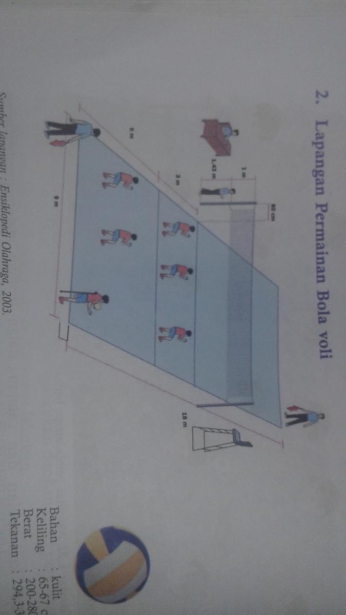 Bentuk Lapangan Bola Voli Dan Ukuran Brainly Co Id