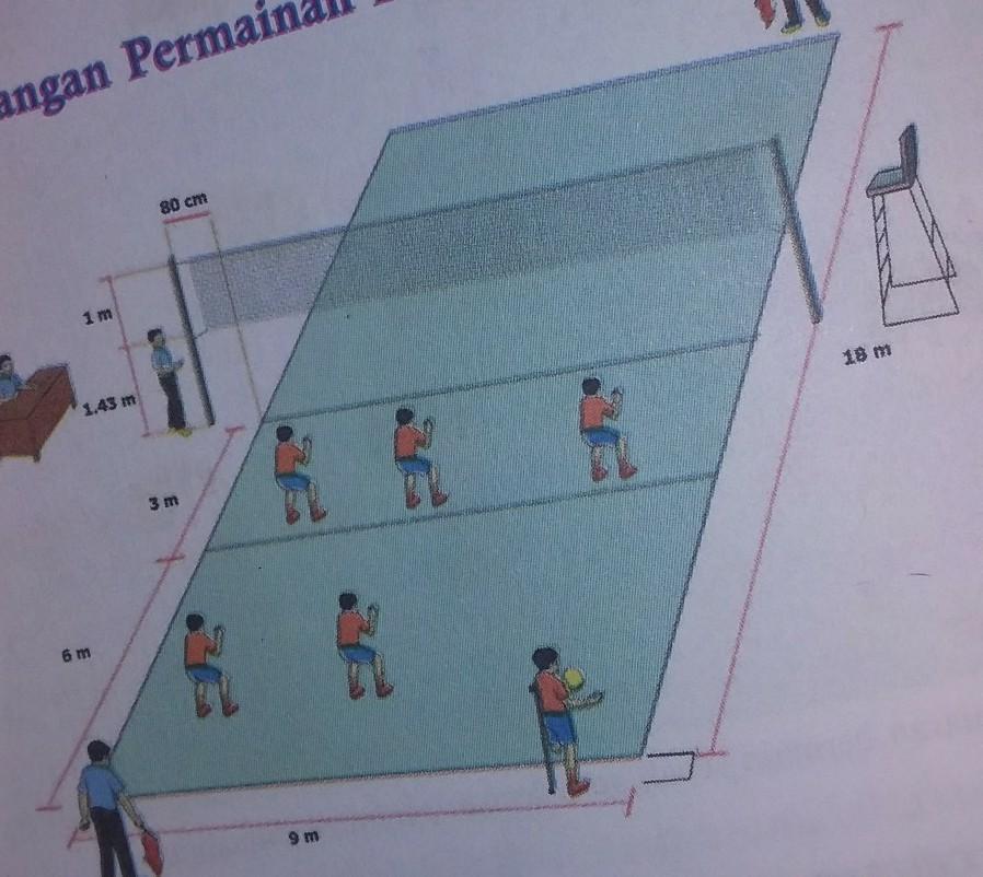 Gambar Lapangan Bola Voli Berseta Ukuran Brainly Co Id