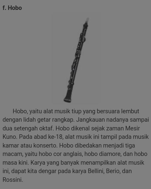 53 Gambar Alat Musik Hobo Paling Hist