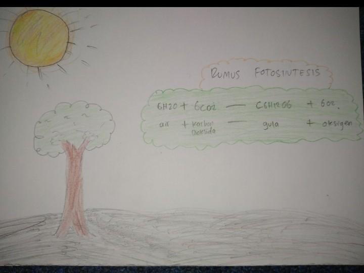 makna kata fotosintetis adalah Pliss Jawab   Brainly.co.id