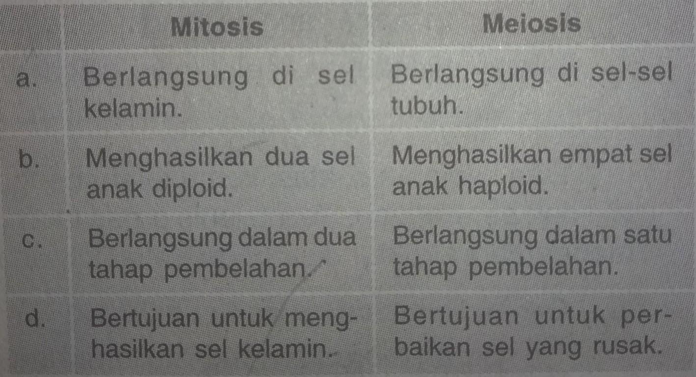 Perbedaan Antara Pembelahan Mitosis Dan Meiosis Dalam Tabel Berikut Yang Benar Adalah Brainly Co Id