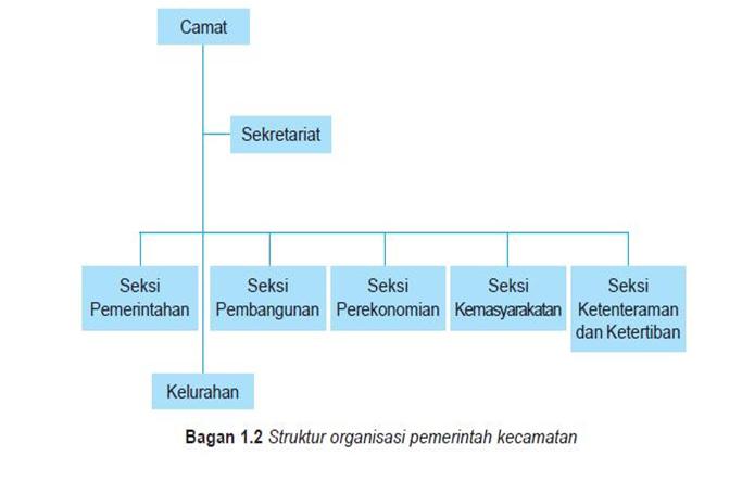 sebutkan struktur organisasi kecamatan brainly co id Struktur Organisasi Kelurahan unduh png