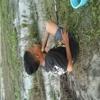 suswanto2