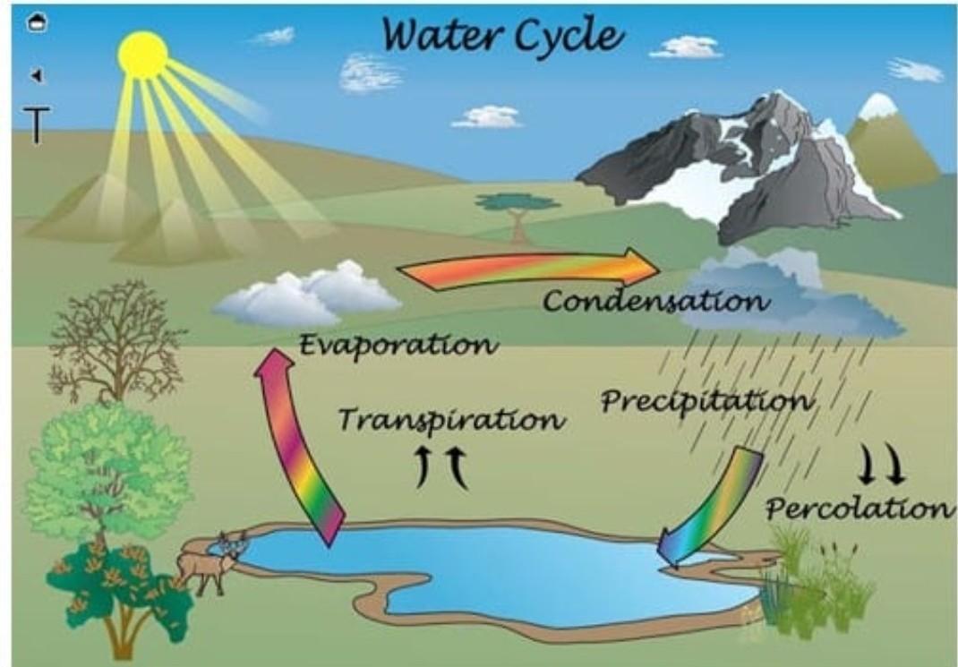 Cara Membuat Poster Siklus Air | Semburat Warna