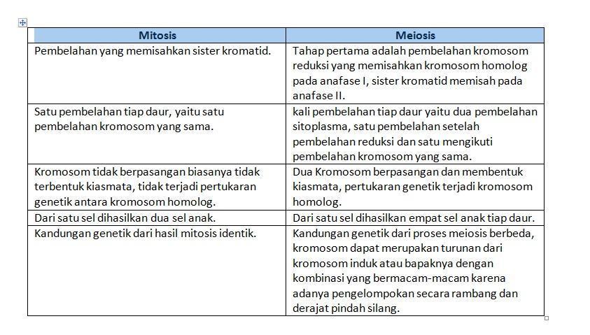 Jelaskan 5 Perbedaan Pembelahan Mitosis Dan Meiosis Brainly Co Id